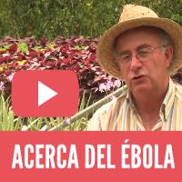 Acerca del Ébola