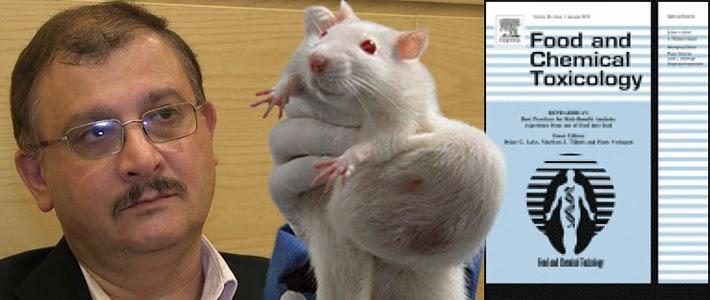https://joseppamies.files.wordpress.com/2014/12/cbb2e-seralini-tumour-rat-food-and-chemical-toxicology-710px.jpg
